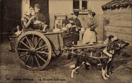 Cp Laitier Flamand, Flemish Milkman, Flämischer Milchmann, Arbeitshunde - Brussels (City)
