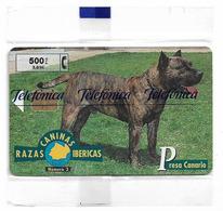 Spain - Telefónica - Razas Caninas Ibericas - Presa Canario Dog - P-395 - 08.1999, 500PTA, 5.300ex, NSB - España