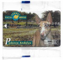 Spain - Telefonica - Razas Caninas Ibericas - Podenco Andaluz Dog - P-452 - 02.2001, 500PTA, 4.400ex, NSB - España
