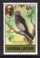 SIERRA LEONE - 1981 10c GREY PARROT BIRD STAMP WITH IMPRINT DATE FINE MNH ** SG 627B - Sierra Leone (1961-...)