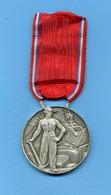Médaille En Argent - Syndicat Des Entrepreneurs De Travaux Publique: De France Et D'Outre Mer;nominée: TOLLINI - Professionals / Firms