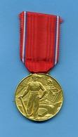 Médaille En Argent: Vermeil - Syndicat Des Entrepreneurs De Travaux Publique: De France Et D'Outre Mer;nominée: TOLLINI - Professionals / Firms