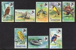 LESOTHO - 1981 SHORT SET OF BIRD STAMPS TO 25S (8V) FINE MNH ** SG 437-434 - Lesotho (1966-...)