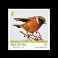 Isle Of Man 2019 Mih. 2455 Europa. National Birds. Isle Of Man Wildlife. Fauna MNH ** - Man (Ile De)