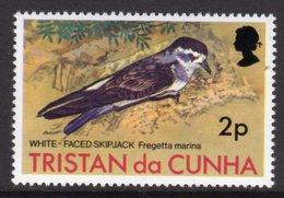 TRISTAN DA CUNHA - 1977 2p WHITE-FACED STORM PETREL BIRD STAMP FINE MNH ** SG 221 - Tristan Da Cunha