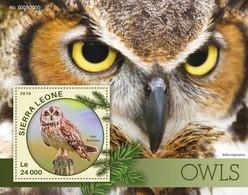Sierra Leone, 2016. [srl16105] Owls (s\s+m\s) - Owls