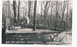 D-9713   BAD SALZGITTER : Hitlereiche Gedenkstein - Salzgitter