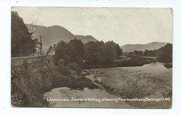 Wales Montgomeryshire Llandinam  Rp Showing Penrhuddlan And The Sugar Loaf 1915 - Montgomeryshire
