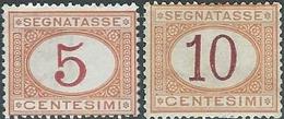 ITALY ITALIA ITALIEN ITALIE REGNO TAXE 1890 - 1894 , 5c & 30c,Not Used - 1878-00 Humbert I.