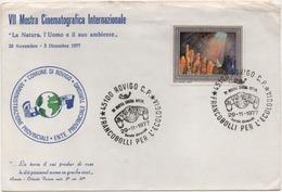 Rovigo 29.11.1977: 7^ Mostra Cinema Internazionale, Francobolli Per L'ecologia. Su Busta Speciale - Cinema