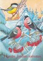 Bird - Birds - Oiseau - Vogel - Uccello - Pássaro - Bullfinches - Great Tit In Winter Landscape - Christmas