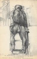 Afrique Occidentale, ôte D'Ivoire: Grand Bassam: Chimpanzé Capturé - Collection L. Méteyer - Carte N° 29 - Apen