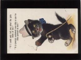 Chat Noir à Attitude Humaine Si Je Pouvais Seulement Vous Dire Ce Que ...édit. Inter Art Co Florence House N°5055 - Chats