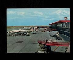Cartolina Roma Fiumicino Aeroporto Internazionale L. Da Vinci (Trans World Airlines USA, In Primo Piano) - Fiumicino