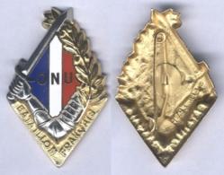 Insigne Du Bataillon Français De L'O.N.U. En Corée - Armée De Terre