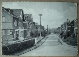 Rixensart. - Avenue Paul Terlinden. - Ca. 1950. - Rixensart