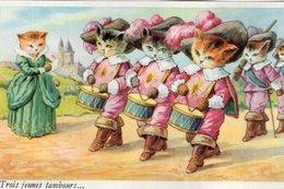 "3739 Cpa Chats Habillés ""état"" - Dressed Animals"