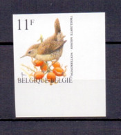 2449 Winterkoninkje Buzin Vogel ONGETAND POSTFRIS**  1992 - België