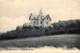 Belgique - Gedinne - Château Du Rot - Gedinne