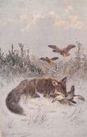 Hunting Chasse Partridge Fuchs Renhart Fox  A.Müller  Old Dog  Cpa.1905 - Perros