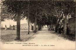 CPA MONISTROL-sur-LOIRE - Les Allées Du Chateau (517321) - Monistrol Sur Loire