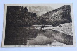 Les Gorges Du Tarn - La Remontée Des Barques à Cheval - France