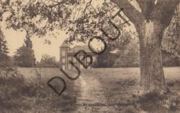 Postkaart/ Carte Postale - LIBIN - Foyer De Vacances - Les Fauvettes - Le Parc   (O848) - Libin