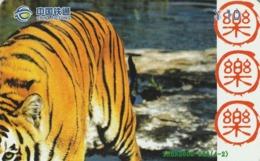 CHINA. FAUNA. PUZZLE. TIGRE - TIGER. XSBN2005-614(4-2). (017). - Puzzles