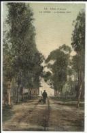 Côte D'Azur - LA LONDE - Le Château Vert - 1919 - Sonstige Gemeinden