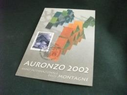AURONZO 2002 ANNO INTERNAZIONALE DELLE MONTAGNE - Belluno