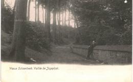 VIEUX SCHAERBEEK   Vallée De Josaphat. - Spoorwegen, Stations