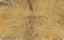 CHINA. FAUNA. PUZZLE. TIGRE Y LEON - TIGER AND LION. 063(16-2). (030). - Puzzles
