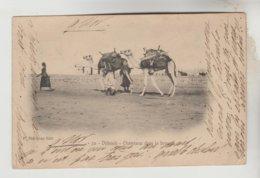 CPA DJIBOUTI - Chameaux Dans La Brousse - Gibuti