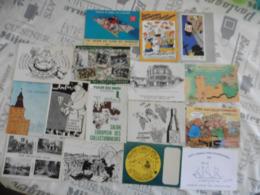 LOT DE  16   CARTES  POSTALES   SUR  LES  SALONS  DE  COLLECTIONS - 5 - 99 Cartes