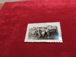 WEHRMACHT  PANZER ELEPHANT - 1939-45