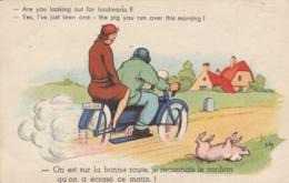 CPSM Couple Sur Une Moto Motocyclette 2 Roues Cochon écrasé Porc Pig Humour Illustrateur (2 Scans) - Künstlerkarten