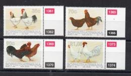 BOPHUTHATSWANA - CHICKEN - HEN - POULES - COQ - ANIMAUX DE LA FERME - FARM ANIMALS - 1993 - - Bophuthatswana