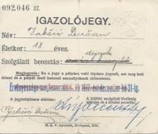 Document DO000141 - Austria Hungary Croatia Igazolojegy / Iskaznica / Railway Card 1917 - Documents Historiques