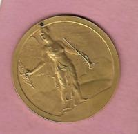 Médaille BRONZE Musique CREIL ?  Evànement Du 20 Juin 1948 Signée L O MATTEI - Autres