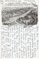 THIELT - Institut De La Ste Famille A Thielt - Tielt