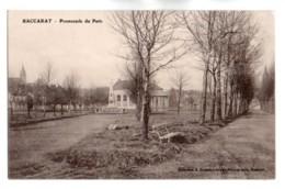 (54) 491, Baccarat, Renard, Promenade Du Patis - Baccarat