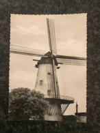 Deerlijk - Molen  - Mill - Muhle - Moulin - Deerlijk