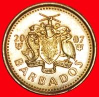 + GREAT BRITAIN (2007-2018): BARBADOS ★ 5 CENTS 2007 MAGNETIC UNDESCRIBED! LOW START ★ NO RESERVE! - Barbados (Barbuda)
