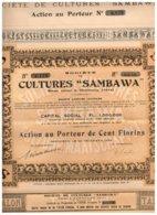 Titre Ancien - Société De Cultures Sambawa - Société Anonyme Javanaise - Titre De 1928 - - Asie