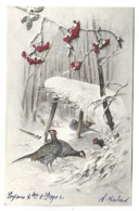Oiseaux Et Paysage Neigeux - Illustrateur MM VIENNE - Vienne