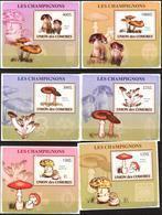 A{115} Comoros 2009 Mushrooms 6 S/S Deluxe MNH** - Comores (1975-...)