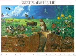 UNITED STATES OF AMERICA 2001 GREAT PLAINS PRAIRIE PANE OF 10** (MNH) - United States