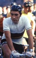 CYCLISME - WIELRENNEN - CICLISMO - 1 PHOTO REPRODUCTION - EDDY MERCKX - Cyclisme