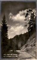 Serie: Haggen-Hölle Riethäusle - Nr. 10 Waldpartie In Der Hölle (b) - SG St. Gallen