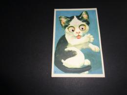Carte ( 73 ) Avec Yeux Mobiles ( En Plastique )  -  Chat  Kat - Cartoline Con Meccanismi